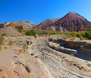 Mountain landscape and dry river bed at Aktau Mountains, Altyn Emel National Park. Kazakhstan.  -  Mark Taylor