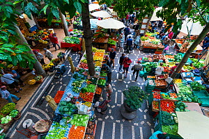 Aerial view of stalls in farmers' market, Funchal, Madeira Island, Portugal, March 2016. - Juan  Carlos Munoz