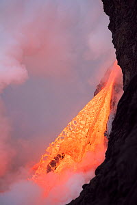 Hot lava from the 61G flow from Kilauea Volcano gushing into the Pacific Ocean from the open end of a lava tube at the Kamokuna entry in Hawaii Volcanoes National Park, producing a great cloud of stea...  -  Doug Perrine