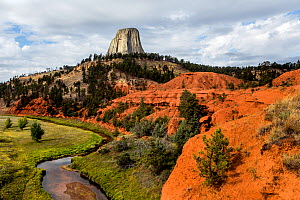 Devils Tower with the Red Beds and Belle Fourche River in Devils Tower National Monument, Wyoming, USA, September 2016.  -  Kirkendall-Spring