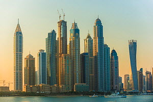 Dubai Marina skyline at dawn, Dubai, United Arab Emirates, November 2011. - Inaki  Relanzon