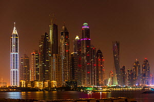 Dubai Marina skyline at night, Dubai, United Arab Emirates. November 2013. - Inaki  Relanzon
