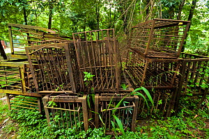 Disused, rusty cages used for Moon bears (Ursus thibetanus) from a bear bile farm. Bile is extracted from the bears' livers to be used in traditional Chinese medicine, China. September 2011.  -  Inaki  Relanzon