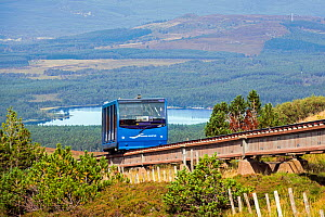 Carriage of the Cairngorm Mountain funicular, highest railway in the United Kingdom in the Cairngorms National Park, Scotland, UK, September 2016  -  Philippe Clement