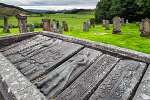 Carved Kilmartin Stones, collection of 79 ancient graveslabs at Kilmartin Parish Church, Argyll, Scotland, UK, September 2016  -  Philippe Clement