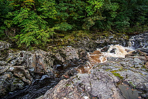 Soldier's Leap, historic spot along the River Garry at the Pass of Killiecrankie, Scotland, UK, September 2016.  -  Philippe Clement