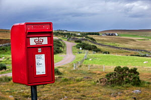 Traditional Royal Mail red mailbox in the countryside at Coigach, Ross and Cromarty, Scottish Highlands, Scotland, UK, September 2016.  -  Philippe Clement