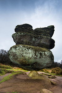 Rock pedestal created by variable erosion of soft and hard layers of carboniferous age millstone grit, Brimham Rocks, Harrogate, Yorkshire, England, UK, October 2016. - Graham Eaton