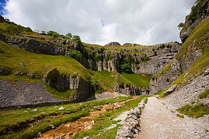 Footpath to Gordale Scar beside Gordale Beck near Malham Yorkshire Dales National Park, Yorkshire, England, UK, July 2016 - Mike Read