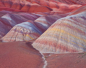 Eroded Chinle shale mounds with colour bands, beneath the Paria Plateau, Vermilion Cliffs National Monument, Paria Canyon Vermilion, Arizona, USA.  -  Jack Dykinga