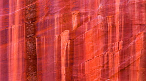 Patterns in sandstone cliffs in Grand Staircase-Escalante National Monument, Utah, USA, October 2014.  -  Jack Dykinga