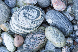 Close up of pebbles on beach, Scotland, UK, October.  -  SCOTLAND: The Big Picture