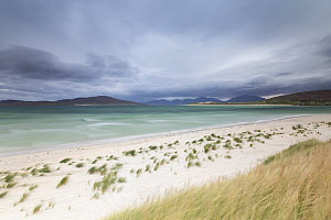 Dunes and beach, Luskentyre, Isle of Harris, Outer Hebrides, Scotland, UK, October 2016.  -  SCOTLAND: The Big Picture