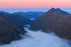 Mountain peaks of Sgurr na h-Aide and Carn Mor  above temperature inversion in Glen Dessary, Knoydart at sunrise. Taken from Sgurr Cos na Breachd-laoidh, Lochaber, Scotland, UK, October 2016.  -  SCOTLAND: The Big Picture