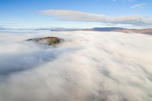 Ord Ban rising out above morning mist, temperature inversion, Cairngorms National Park, Scotland, UK, October 2016. - SCOTLAND: The Big Picture