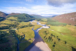 Patches of riparian growth alongside the River Dee, with Mar Lodge Estate in distance, Deeside, Cairngorms National Park, Scotland, UK, September 2016. - SCOTLAND: The Big Picture