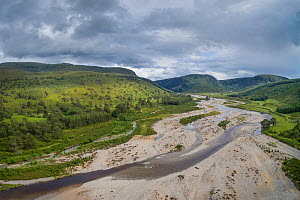 Aerial view of braided channel of River feshie, with regenerating Scots pine (Pinus sylvestris) forest and Carn Dearg Mor in background, Glenfeshie, Cairngorms National Park, Scotland, UK, June 2016. - SCOTLAND: The Big Picture