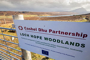 Sign on gate to major woodland restoration project run by Cashel Dhu Partnership, with Loch Hope and Ben Hope in background, Sutherland, Scotland, UK,  -  SCOTLAND: The Big Picture