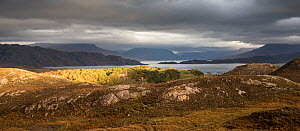 Loch Torridon in stormy weather with view to Liathach, Ben Damph, Wester Ross, Scotland, UK, October 2016.  -  SCOTLAND: The Big Picture