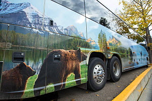 Touring bus showing wildlife branding on side, Jasper National Park, Alberta, Canada, June - SCOTLAND: The Big Picture