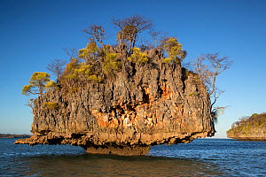 Mushroom island in Moramba Bay, close to Anjajavy Private Reserve, north west Madagascar, August 2016.  -  David  Pattyn