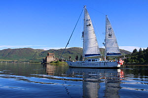 Hebridean Whale and Dolphin Trust survey and teaching boat 'Silurian' Scotland, UK, July 2016.  -  HWDT Crew