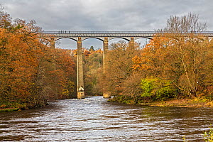 Pont Cysyllte Aqueduct taking the Llangollen canal across the River Dee in the Vale of Llangollen near Trevor North Wales UK November 54161 - Alan  Williams