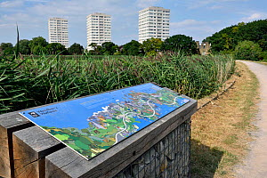 Map of urban nature reserve with tower blocks in distance, Woodberry Wetlands, formally Stoke Newington Reservoirs, Hackney, England. UK, August 2016.  -  Pat  Tuson