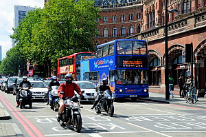 Traffic on Euston Road, one of the most polluted road, in the country, London, England, Britain, UK, August 2014.  -  Pat  Tuson