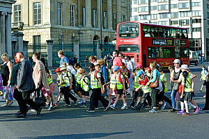 Group of school children wearing high visibility jackets crossing the road, sometimes called walking bus, Hyde Park Corner, London, UK, June 2015.  -  Pat  Tuson