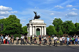 Commuter cyclists waiting for the lights to change, Hyde Park Corner, Wellington Arch in background, Central London, England, UK, June 2015.  -  Pat  Tuson