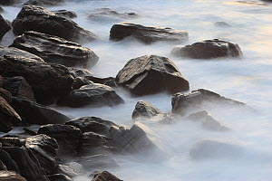 Granite coast of  Yakushima Island, UNESCO World Heritage Site, Japan.  -  Cyril Ruoso