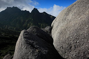 Granite boulders in the central mountainous zone of Yakushima Island, UNESCO World Heritage Site, Japan.  -  Cyril Ruoso