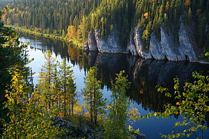 River through Virgin Komi Forests UNESCO World Heritage site, the largest virgin forests in Europe. Ural Mountains, Komi Republic, Russia. August 2016 - Igor  Shpilenok