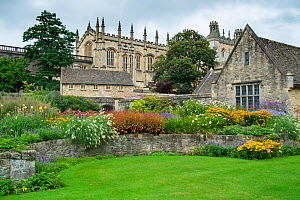 War Memorial Garden at Christ Church, Oxford, England, UK. September 2016.  -  Gary  K. Smith