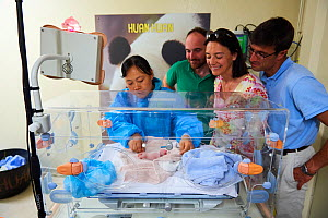 Rodolphe Delord, Managing Director, his sister Delphine Delord, Marketing Manager, and  Baptiste Mulot, Chief veterinarian, and He Ping, the keeper, looking at the newborn Giant panda (Ailuropoda mela... - Eric Baccega