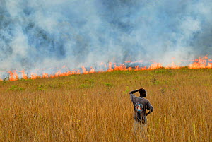 Man watching controlled grassland fire, Lopé National Park, Ecosystem and Relict Cultural Landscape of Lopé-Okanda UNESCO World Heritage Site, Gabon. - Enrique Lopez-Tapia