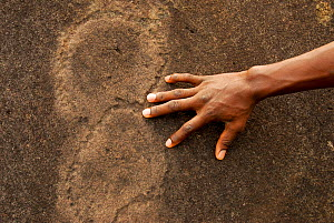 Petroglyphs, neolithic rock art, with man's hand for scale. Lopé National Park, Ecosystem and Relict Cultural Landscape of Lopé-Okanda UNESCO World Heritage Site, Gabon. - Enrique Lopez-Tapia