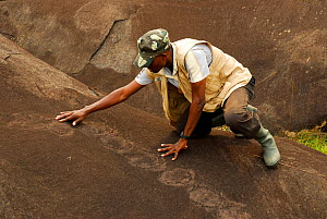 Man looking at petroglyphs, neolithic rock art. Lopé National Park, Ecosystem and Relict Cultural Landscape of Lopé-Okanda UNESCO World Heritage Site, Gabon. - Enrique Lopez-Tapia