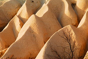 Landscape modified by the erosion process. Goreme National Park and the Rock Sites of Cappadocia UNESCO World Heritage Site. Turkey. December 2006.  -  Enrique Lopez-Tapia