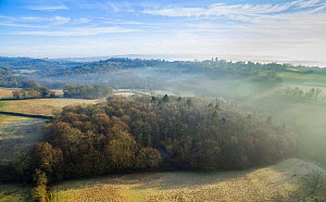 Aerial view of Sussex Weald with Rookery Wood in foreground, Sussex, England, UK, February.  -  Stephen  Dalton