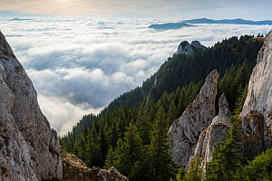 Low lying cloud  in the Piatra Mare Mountains, Transylvania, Romania. October 2011. - Orsolya Haarberg
