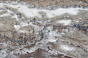 Aerial photograph of snow-covered string bogs/ aapa mires in the Muddus National Park. Laponia World Heritage Site, Swedish Lapland, Sweden. December 2016.  -  Orsolya Haarberg