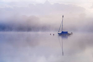 Wimbleball Reservoir in mist with sailing boat and Cormorants (Phalacrocorax carbo), Exmoor National Park, Somerset, UK. May 2017. - Ross Hoddinott
