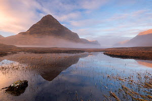 Buachaille Etive Beag reflected in little lochen, early morning light and mist, Glencoe, Scotland, UK. December 2016.  -  Ross Hoddinott