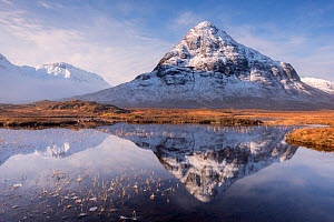 Buachaille Etive Beag reflected in Lochan na Fola after snowfall, early morning light, Glencoe, Scotland, UK. March 2017.  -  Ross Hoddinott