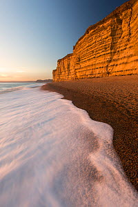 Foam on beach below cliffs at Burton Bradstock, late evening light, Dorset, UK. November 2016. - Ross Hoddinott