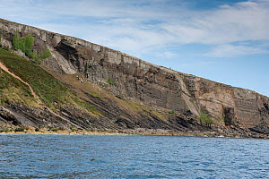 Angular unconformity, between the underlying Cambrian age sedimentary rocks and the overlying Ordovician sedimentary rocks.  Trwyn Wylfa, Abersoch, Wales, August. An unconformity represents a time gap... - Graham Eaton