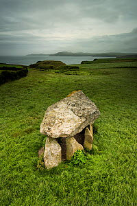 Carreg Samson, a 5000 year old Neolithic dolmen or burial chamber, near Abercastle, Pembrokeshire, Wales, UK, June  -  Graham Eaton