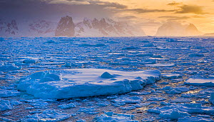 Lemaire Channel at sunset between Booth Island and Cape Renard on Kiev peninsula, Graham Land, Antarctica.  -  Klein & Hubert